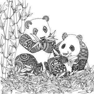 Taipei - Panda
